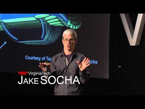 X Marks the Spot: Flying snakes, plus this week's TEDx Talks