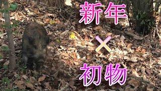 【狩猟season3】新年のご挨拶☆初物☆ゲッツ!