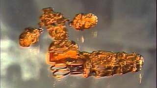 Эрмитаж. Золотая кладовая