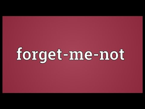 Do you forget me meaning in hindi