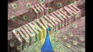 The Bluetones - The Fountainhead (HQ) - Expecting To Fly - 1995