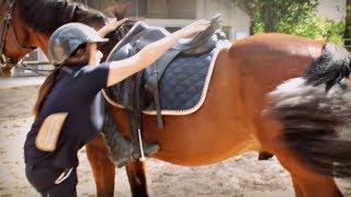 TUTO: Monter à cheval