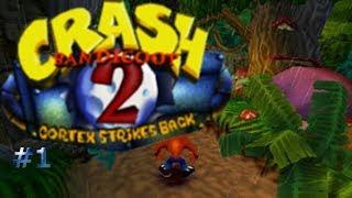 El bosque de las tortugas/Crash Bandicoot 2: Cortex Strikes Back #1