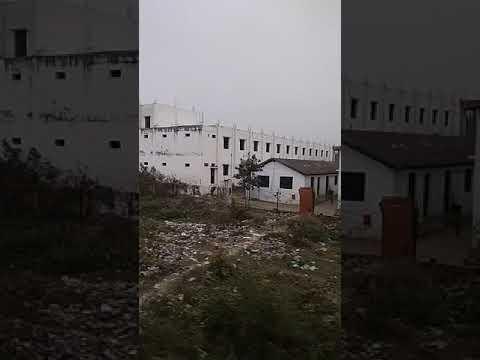 Nandani Nagar mahavidyalaya Nawabganj gonda