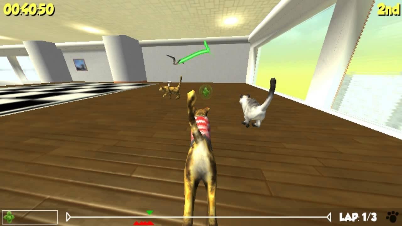 Игра симулятор гонки с котами