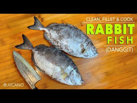 CLEAN, FILLET & COOK || RABBITFISH (Danggit)