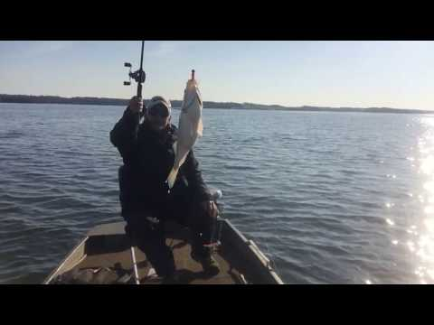 Fishing Tips and Life Lessons on Valentine's Day 2017