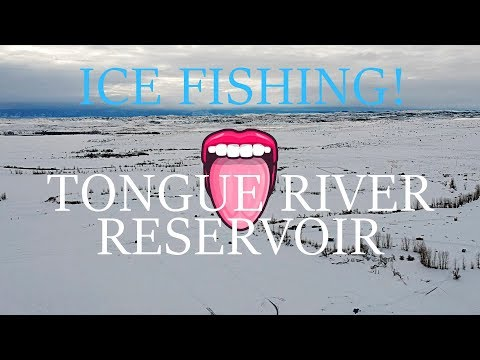 ICE FISHING - Catch And Cook! - Tongue River Reservoir (Fishing Montana)