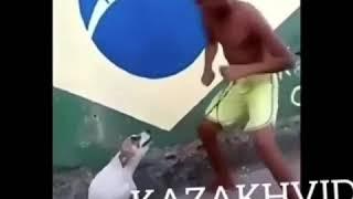 Хозяин и собака танцуют