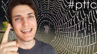 UN PETIT TRUC TOUT CON - Les toiles d'araignées invisibles