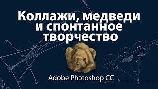 Коллажи, медведи и спонтанное творчество в Adobe Photoshop CC
