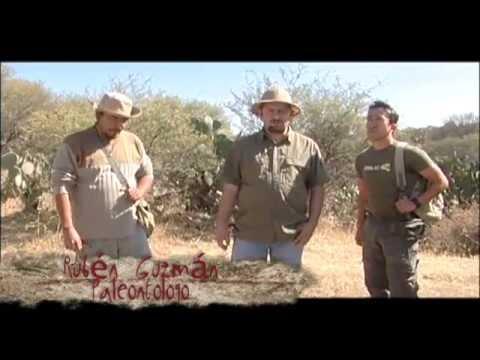 Entre Fósiles de Aguascalientes Producción Aguascalientes TV