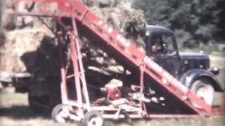 1955 Hay Making in Bay of Plenty, New Zealand