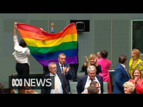 the moment parliament said yes to same sex marriage