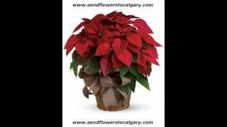 Send flowers from Moldova to Calgary Alberta Canada