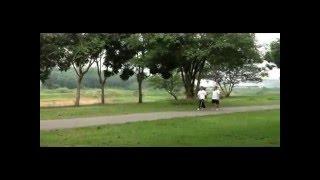 video senaman untuk kesihatan