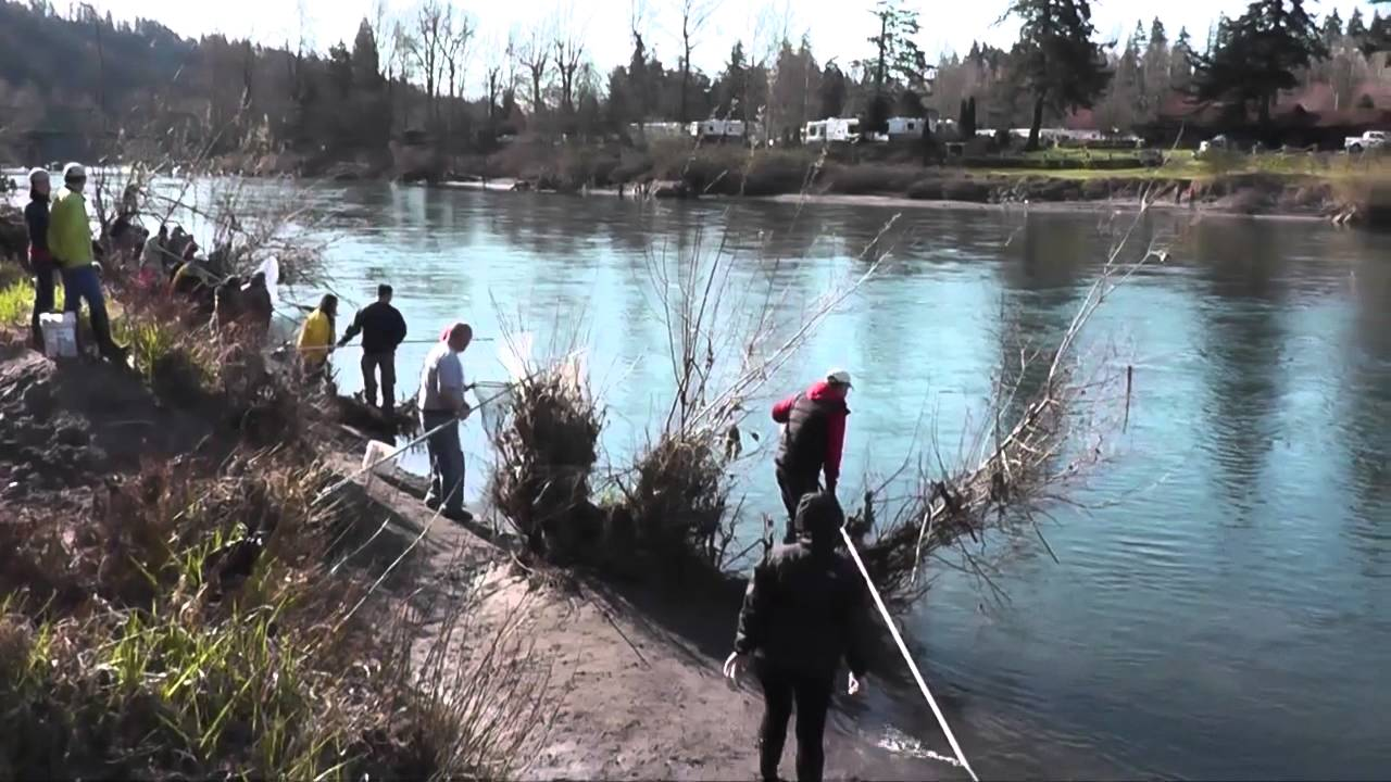Smelt fishing on sandy river oregon 03 22 14 youtube for Oregon free fishing