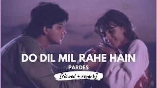 Do Dil Mil Rahe Hain [slowed + reverb] • 𝐵𝑜𝓁𝓁𝓎𝓌𝑜𝑜𝒹 𝐵𝓊𝓉 𝒜𝑒𝓈𝓉𝒽𝑒𝓉𝒾𝒸