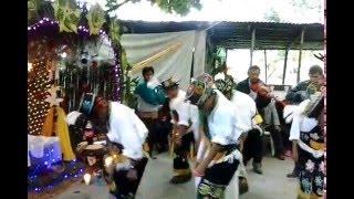 Danza de los Negritos en Espinal Veracruz