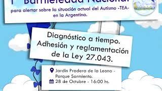 1º Barrileteada Nacional para alertar sobre la situación actual del autismo.