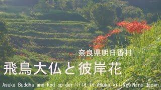 撮影2018.9.18 飛鳥寺(あすかでら)は、奈良県高市郡明日香村にある寺...