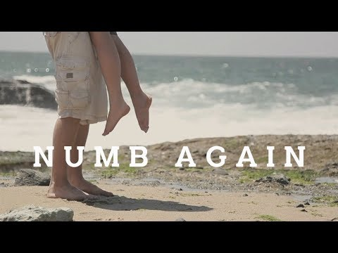 Radu & White Lynx - Numb Again (Asher Remix)