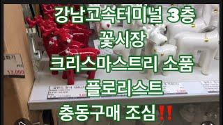 강남고속터미널 3층 꽃도매 크리스마스트리소품 플로리스트…