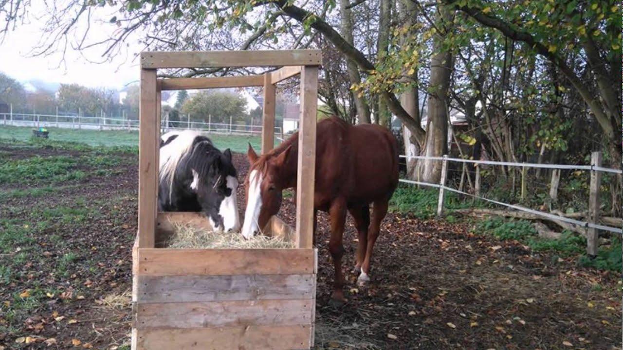 Fabrication d 39 un abri foin youtube - Porte de box pour chevaux a vendre ...