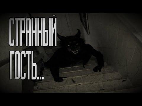Страшные истории на ночь - Странный гость...