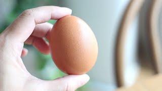 불 없이 1분만에 계란을 맛있게 먹는 초간단 방법 ! …