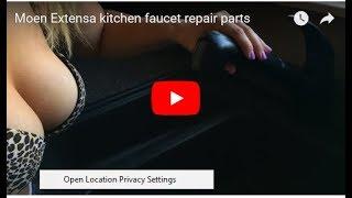 Moen Extensa kitchen faucet repair parts
