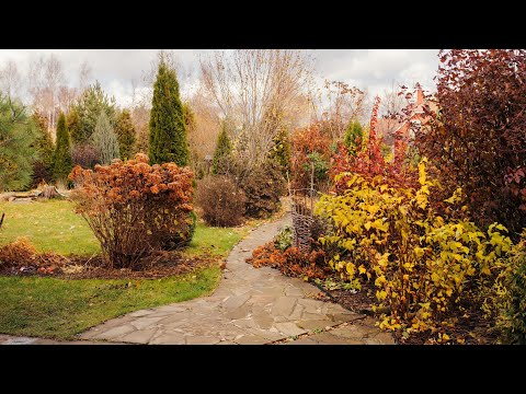 Autunno (seconda parte) from YouTube · Duration:  2 minutes 45 seconds