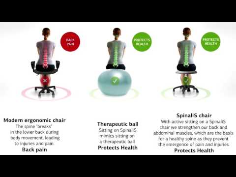SpinaliS Chairs is the Healthiest Choice for Sitting Long Hours Healthy