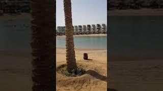 Обзор отеля Sunrise Sentido Mamlouk Palace, Хургада, 11-часть