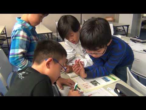 教育コーチングをベースとしたアクティブラーニング型授業 実践例