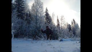 Охота в морозной сказке..