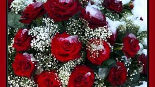 Download И.Аллегрова-Свадебные цветы.wmv Mp3 and Videos