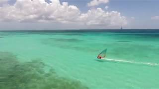 Beauty of windsurfing