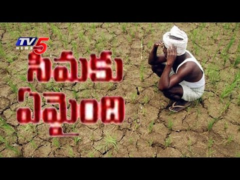Peculiar Situation In Rayalaseema | Severe Drought Hits Farmers In Anantapur | TV5 News