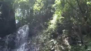 2008年7月27日 埼玉県日高市 五常の滝