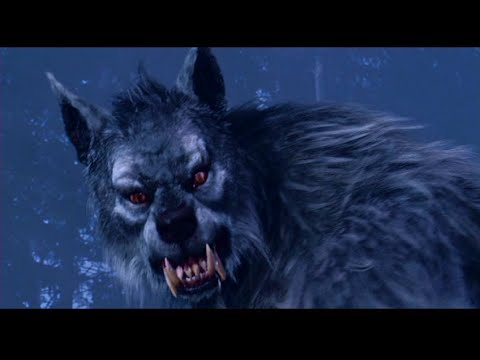Top 20 Highest Grossing Werewolves Movies