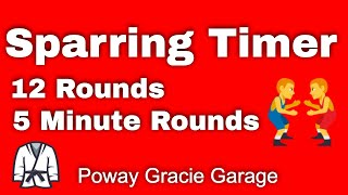 5 Minute Timer (12 Rounds), with 1 Minute Rest