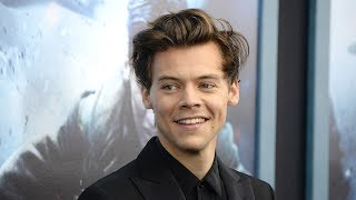 "Harry Styles SHUTS DOWN Reporter Who Asked About His ""Crazy"" Fans"