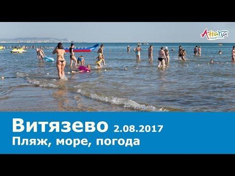 Анапа. Витязево. Пляж 2.08.2017, море погода ВОДОРОСЛИ температура воды