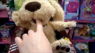 Собака Бен - твой говорящий друг!
