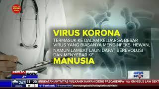 Apa Itu Virus Korona?