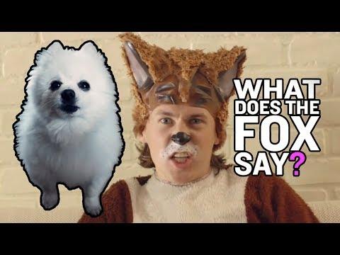 WHAT DOES THE FOX SAY Em CACHORRÊS | NOSTALGIA