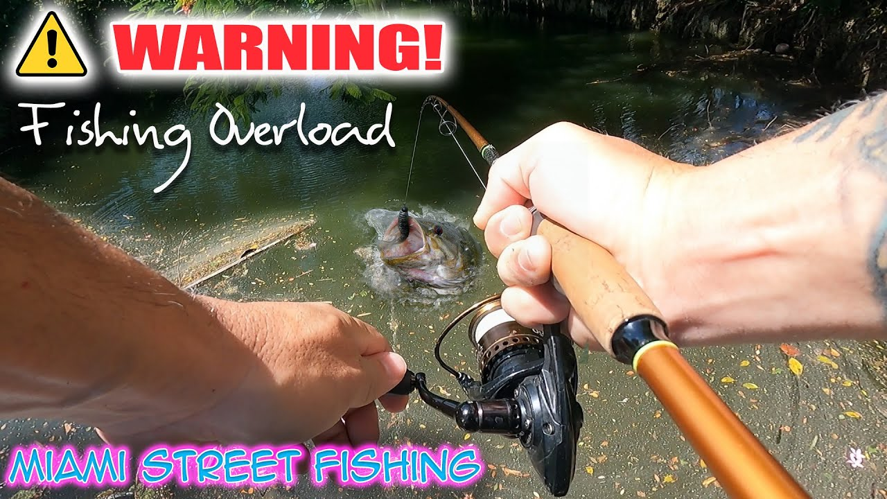 WARNING! Only Watch if You Love Fishing!