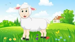 Con vật cho bé | dạy bé học nói động vật con chó bò trâu ngựa lợn gà | dạy trẻ thông minh sớm
