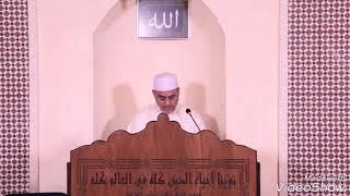 العلامة سعيد فودة يرد على رد البروفيسور محمد باسل الطائي